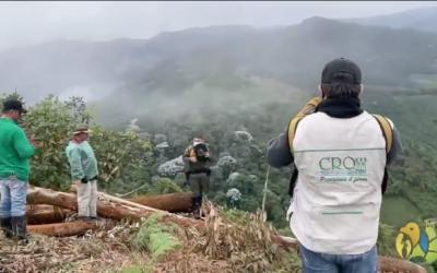 Con la atención de la Unidad de Reacción Inmediata Ambiental de la CRQ y la Policía de Carabineros a denuncia ciudadana fueron decomisados 19.2 metros