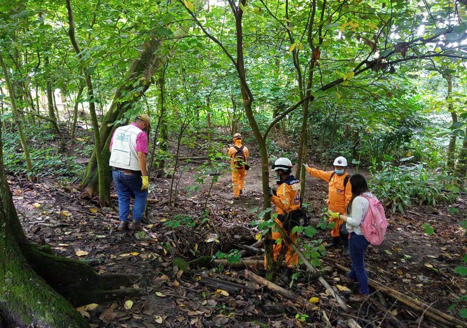 En el marco del Día Mundial del Medio Ambiente, gestores ambientales de la CRQ en el municipio de La Tebaida se sumaron a la jornada de limpieza