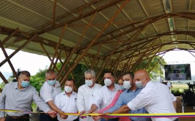 CRQ participa en el primer Encuentro nacional guadua-bambú de Pitalito, Huila